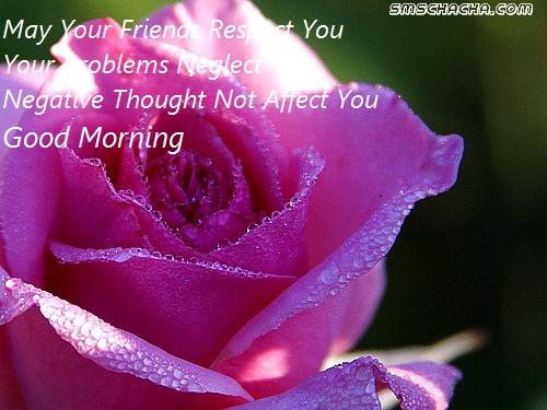 Good Morning Quotes For Fb Picture Sms Status Whatsapp Facebook